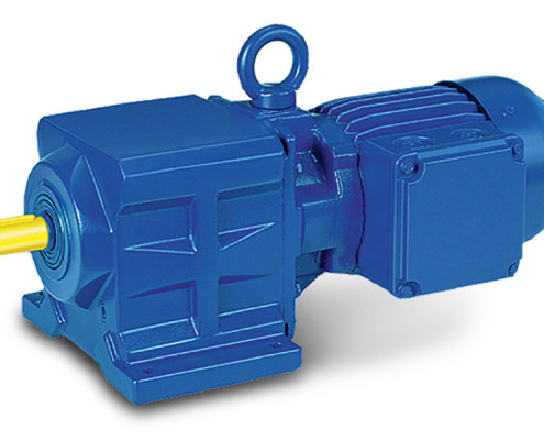 bgm-bg-series-gear-motor